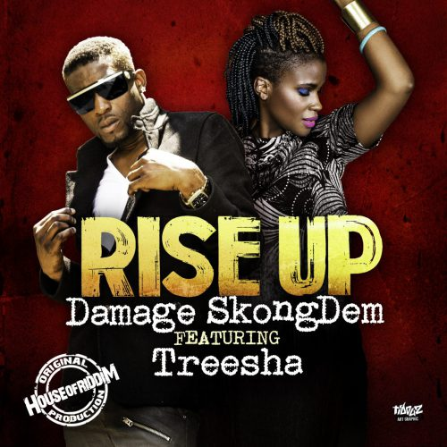 cover_Damage SkongDem_Treesha