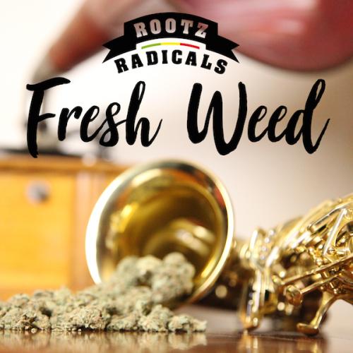 Rootz Radicals – Fresh Weed